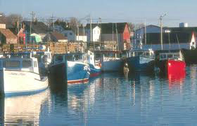 boats-in-harbour